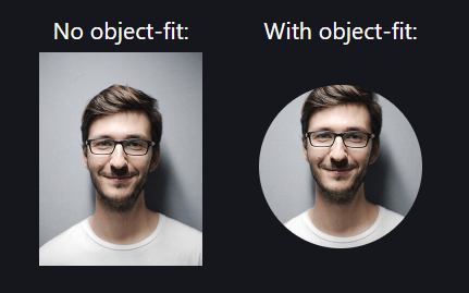 CSS object fit images
